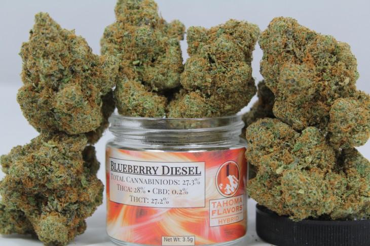 Tahoma: Blueberry Diesel